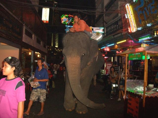 Elephant (281k image)