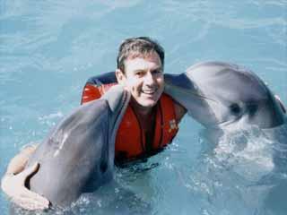 delfin_willi (21k image)